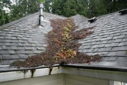Roof debris removal and maintenance service