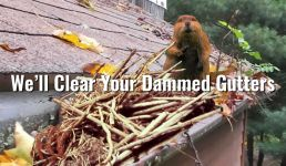 We'll clean your dammed gutters